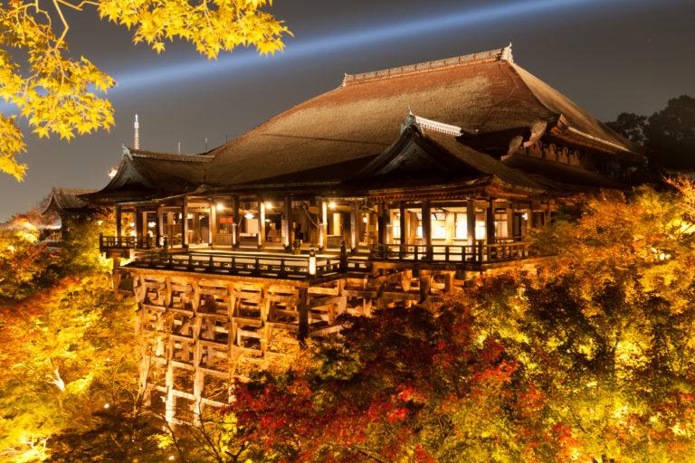 京都での出会い